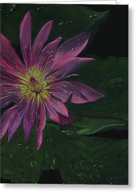 Hawaiian Water Lily - Pink Greeting Card by Sherry Robinson