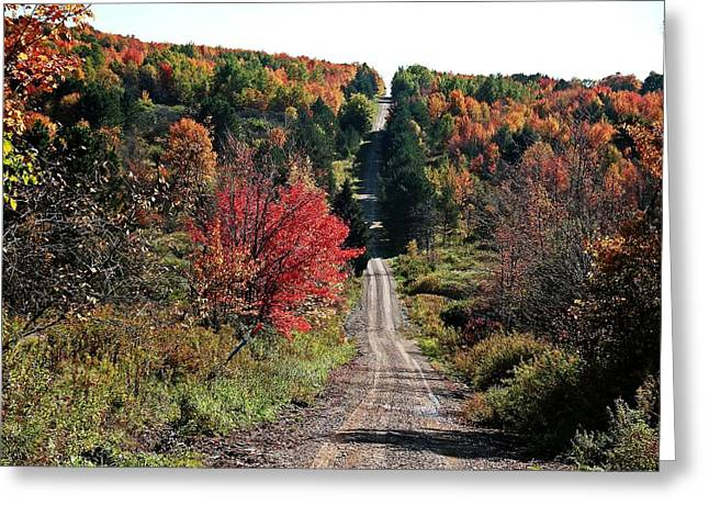 Greeting Card featuring the photograph Hawks Rd by Christian Mattison