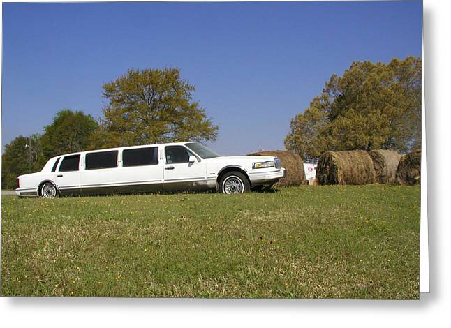 Hay Business Greeting Card by Steve Sperry