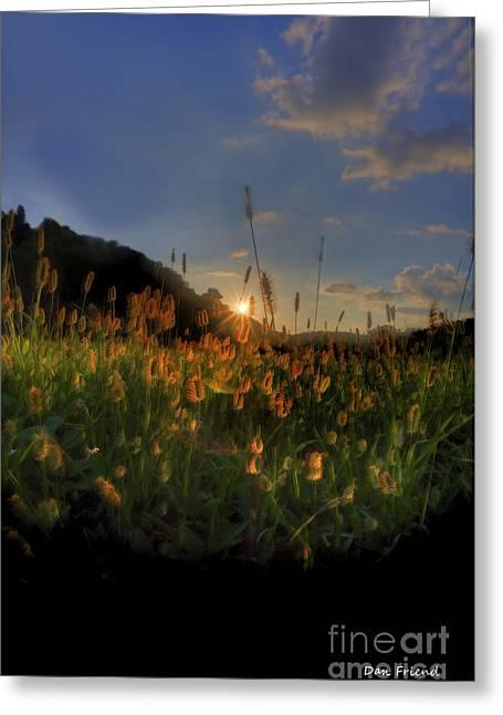 Hay Field Greeting Card by Dan Friend