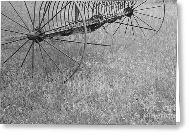 Hay Rake  Greeting Card by Wilma  Birdwell