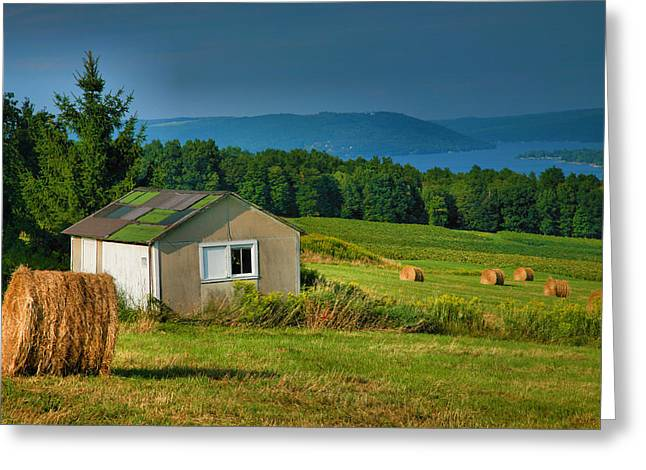 Hayfield And Lake II Greeting Card by Steven Ainsworth