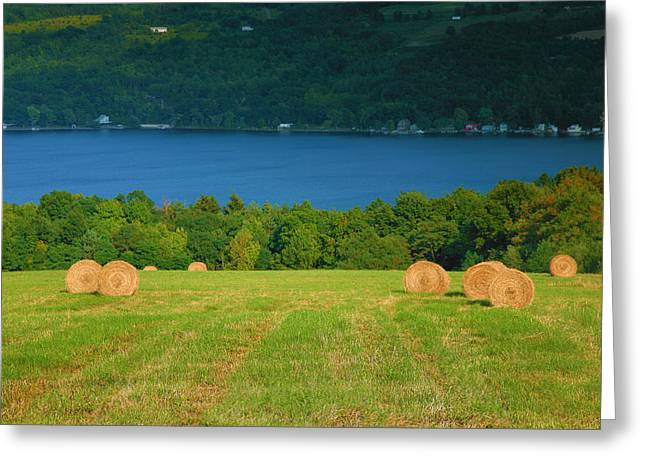 Hayfield And Lake IIi Greeting Card by Steven Ainsworth