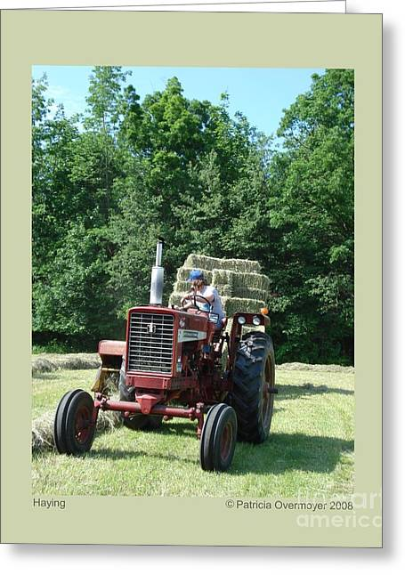 Greeting Card featuring the photograph Haying by Patricia Overmoyer