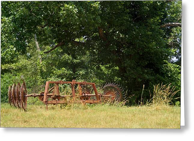 Hayrake Put Out To Pasture 2 Greeting Card by Douglas Barnett