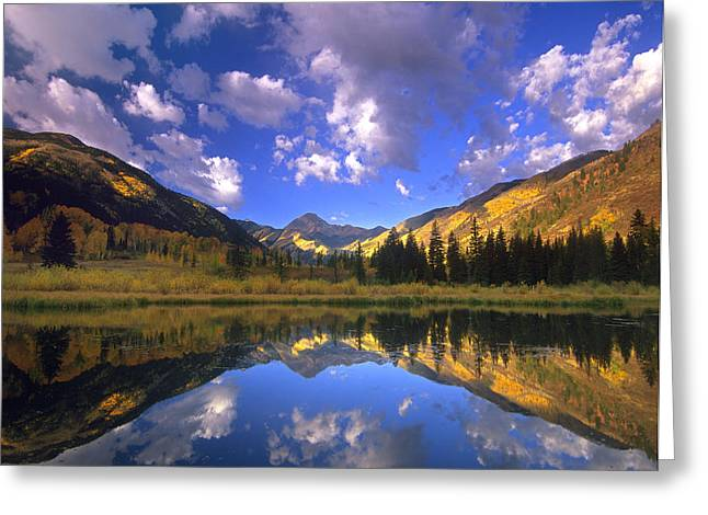Haystack Mountain Reflected In Beaver Greeting Card by Tim Fitzharris