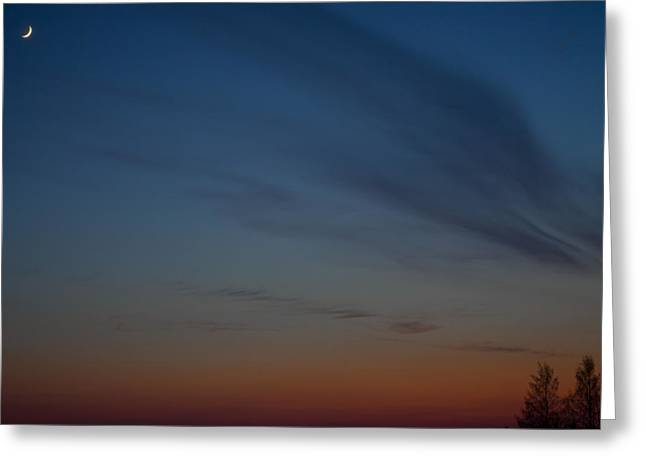 Greeting Card featuring the photograph Hazynezz 4 by Matti Ollikainen