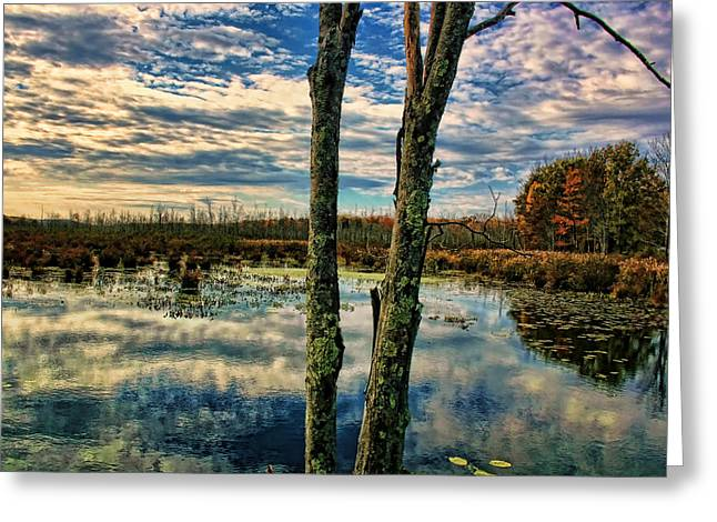 Hd Lakeview Greeting Card by Terry Cork