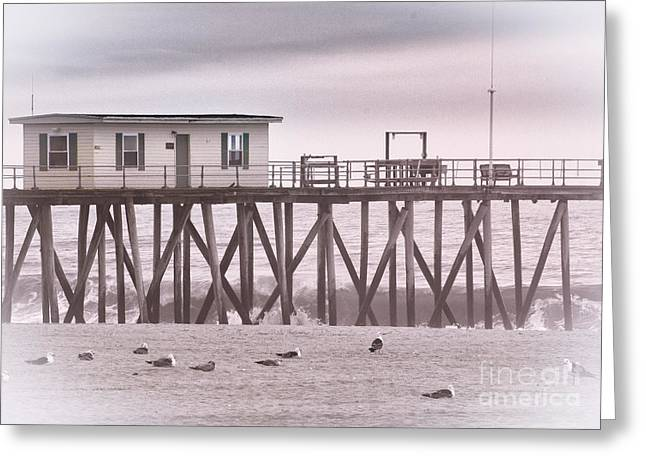 Hdr Beach Beaches Ocean Sea Seaview Black White Photos Pictures Photographs Photography Photo Pics Greeting Card