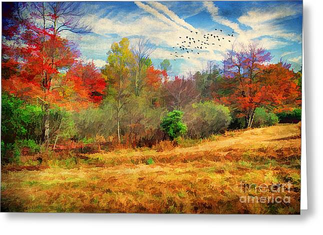Heading South Greeting Card by Darren Fisher