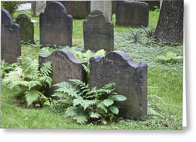 Headstones And Ferns Greeting Card by Teresa Mucha