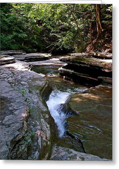 Greeting Card featuring the photograph Headwaters by Christian Mattison