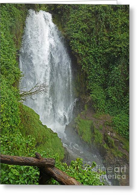 Headwaters Peguche Falls Ecuador Greeting Card