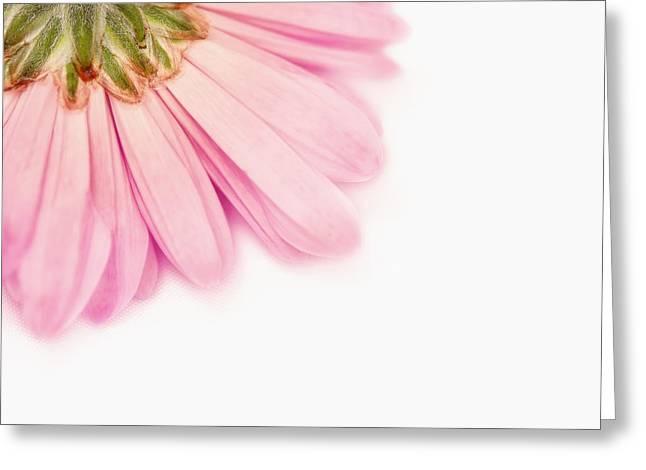 Heavenly Whisper Greeting Card