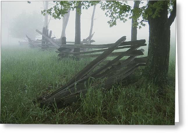 Heavy Fog Hangs Over Split Rail Fences Greeting Card by Stephen St. John