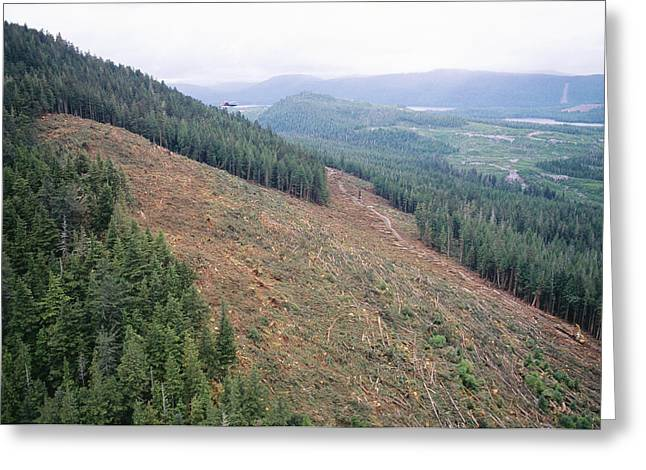 Helicopter Over A Clear-cut Hillside, Canada Greeting Card