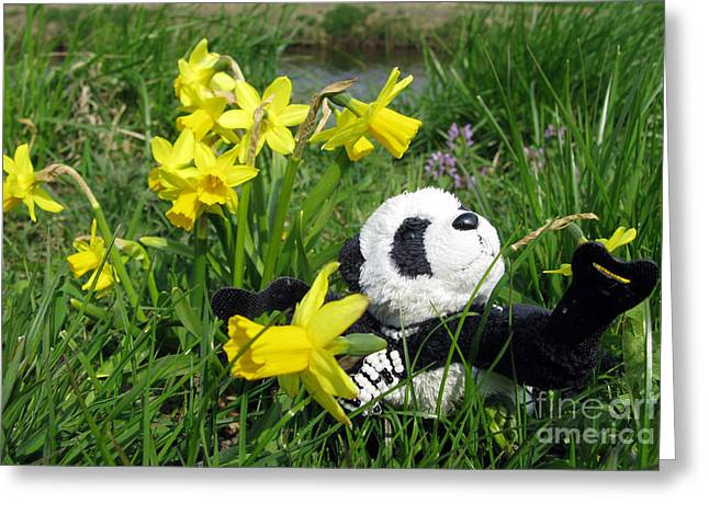 Hello Spring. Ginny From Travelling Pandas Series. Greeting Card by Ausra Huntington nee Paulauskaite