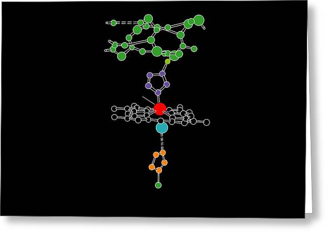 Heme Group In Haemoglobin, Artwork Greeting Card by Francis Leroy, Biocosmos