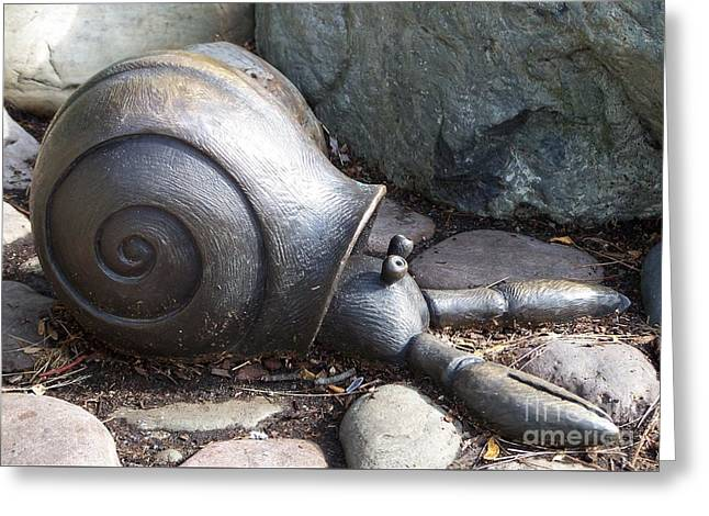 Greeting Card featuring the photograph Hermit Crab by Chalet Roome-Rigdon