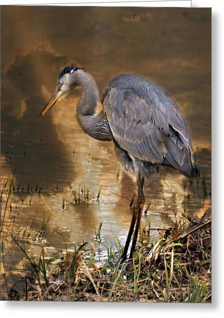 Heron Bronze Greeting Card by Marty Koch