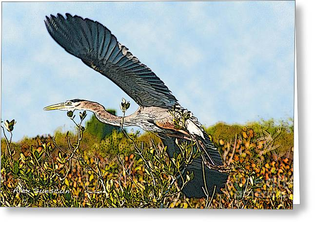 Heron Glide Greeting Card