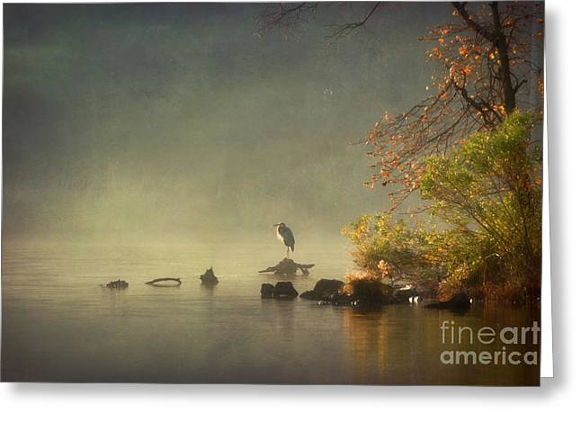 Heron In Morning Mist Greeting Card by Susan Isakson