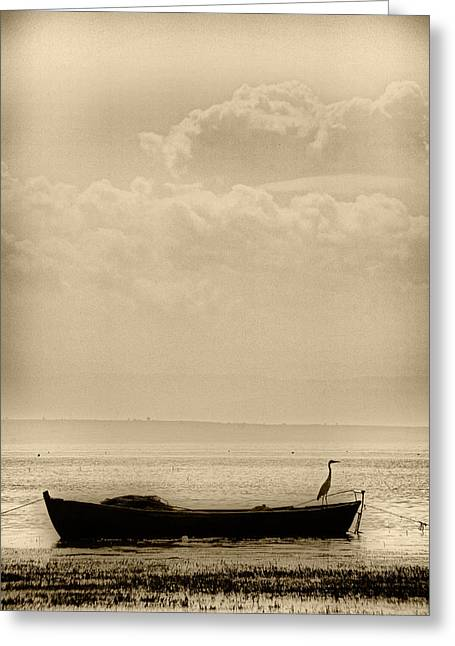 Greeting Card featuring the photograph Heron On The Boat by Okan YILMAZ
