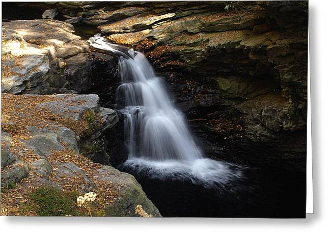 Greeting Card featuring the photograph Hidden Falls by Raymond Earley