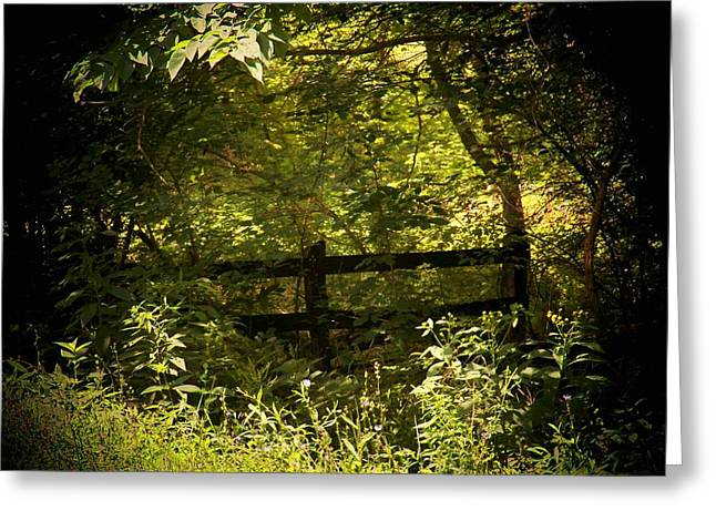 Hidden Fence Greeting Card