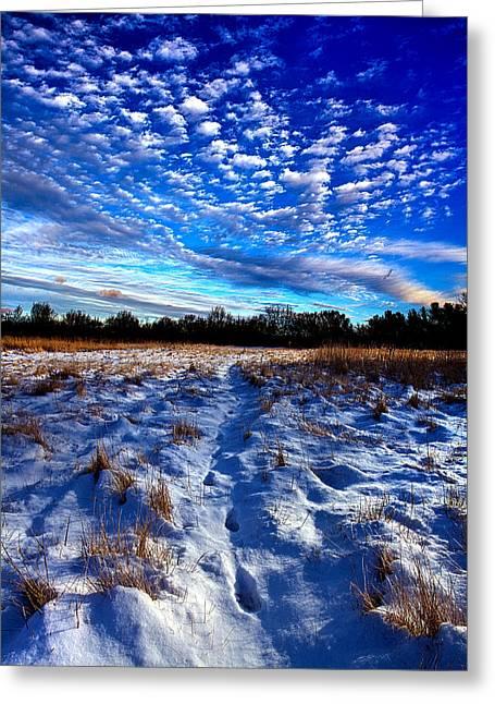 Hidden Meadow Greeting Card by Phil Koch
