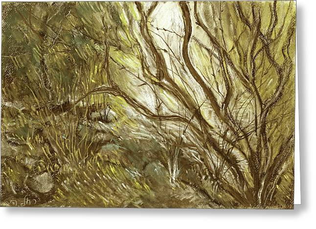 Hideaway Plants In Brown Yellow And Green Branches Leaves Trunks Stones Greeting Card by Rachel Hershkovitz