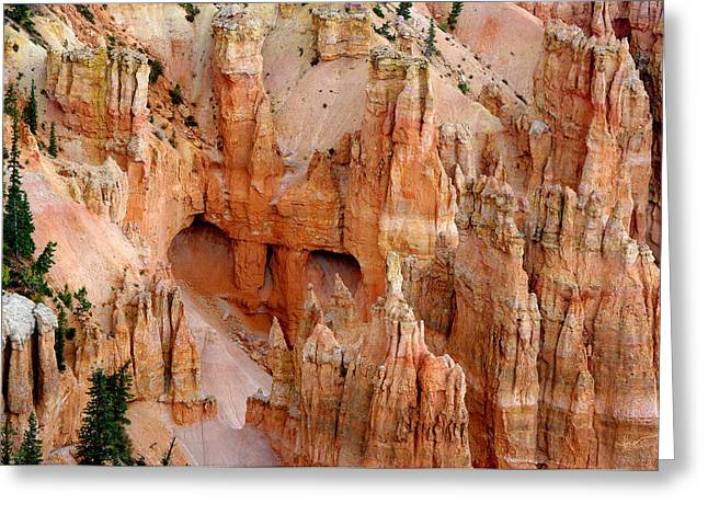Greeting Card featuring the photograph Hideaway  by Vicki Pelham