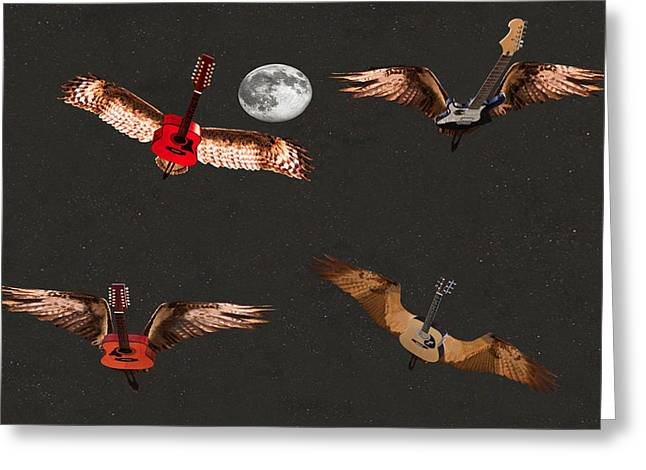 High Flying Bird Greeting Card by Eric Kempson