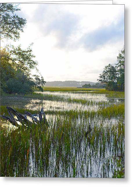 Greeting Card featuring the photograph High Tide by Margaret Palmer