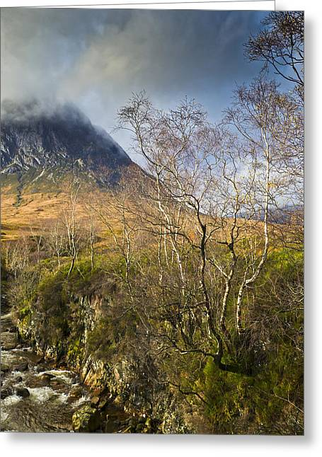Highland View In Autumn  Greeting Card