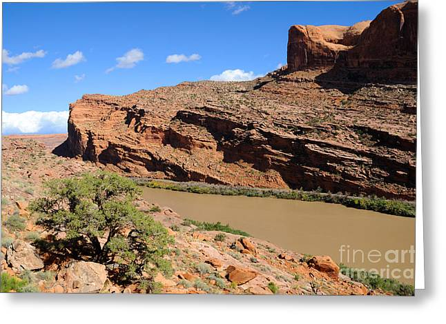 Hiking The Moab Rim Greeting Card by Gary Whitton