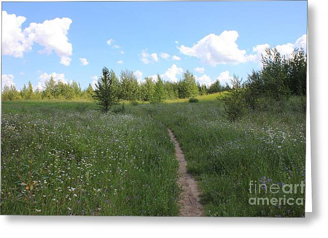 Hiking Trail In A Meadow Greeting Card