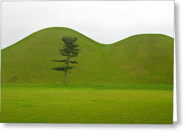 Hill Tombs And Tree Korea Greeting Card by Gabor Pozsgai