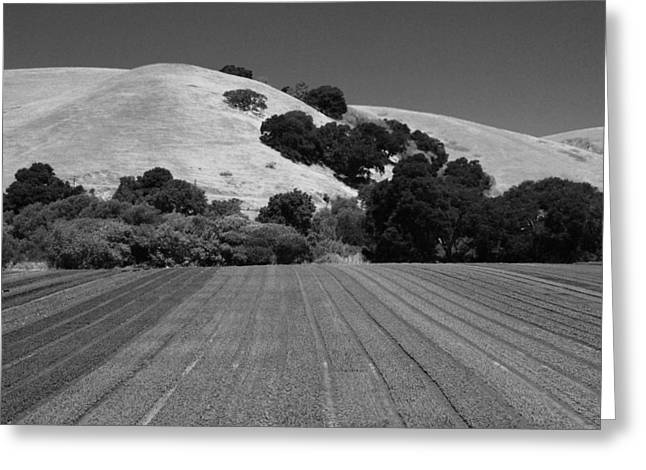 Greeting Card featuring the photograph Hillside Farmland by Kathleen Grace