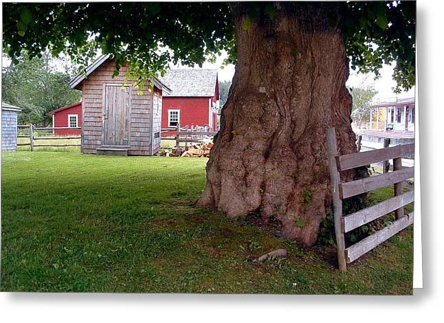 History Sherbrooke Village Nova Scotia Greeting Card