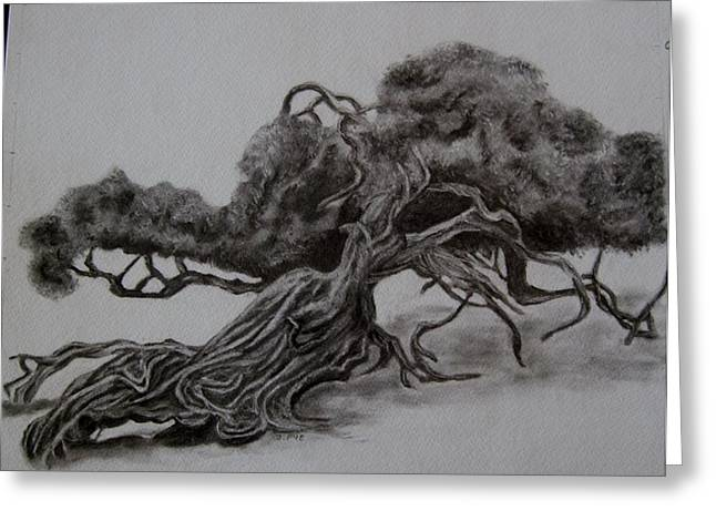 Hobbit Tree Greeting Card by Joan Pye