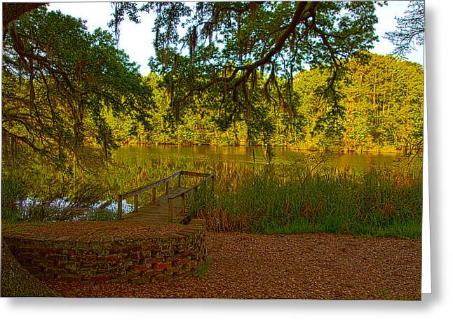 Hobcaw Barony Pond Greeting Card by Bill Barber
