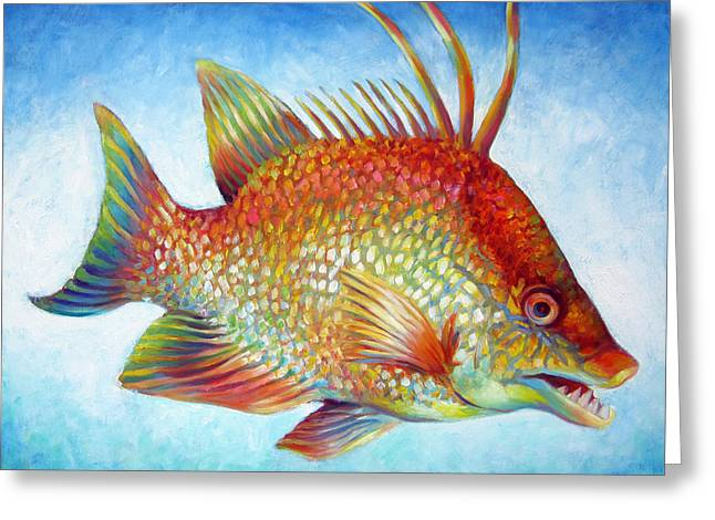 Hogfish Snapper Greeting Card by Nancy Tilles