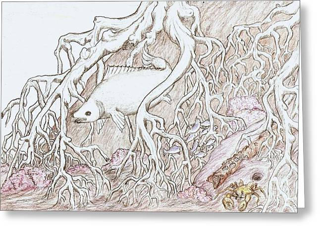 Home In Mangrove Roots  Greeting Card