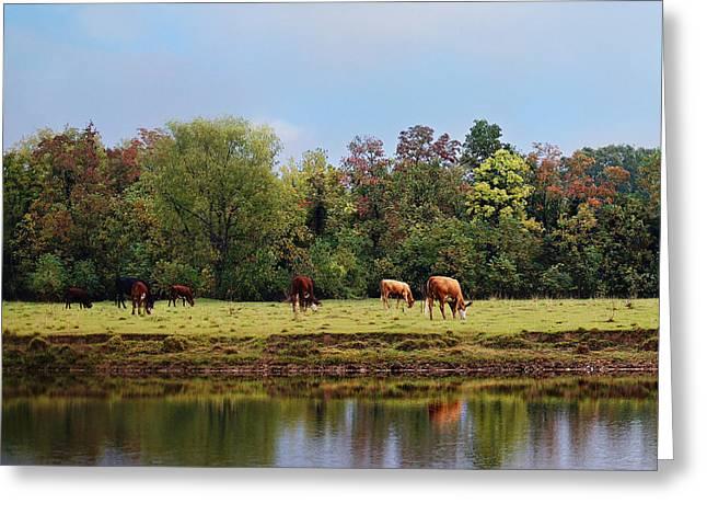 Home On The Range Greeting Card by Susan Bordelon