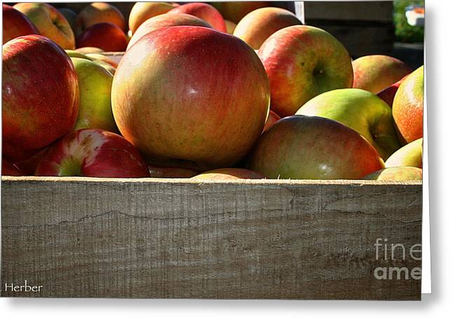 Honey Crisp Greeting Card