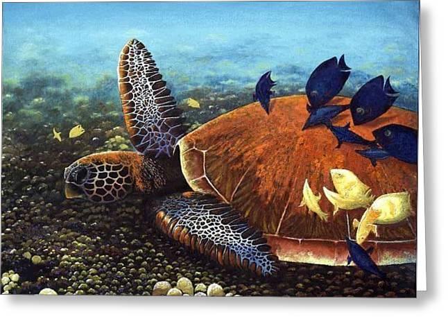 Honu With Cleaner Fish Greeting Card by Deborah Beaver