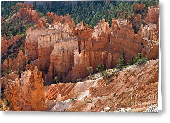 Hoodoos In The Morning Greeting Card by Jim Chamberlain