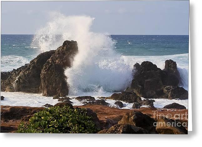 Hookipa Beach Wave 1 Greeting Card by Teresa Zieba