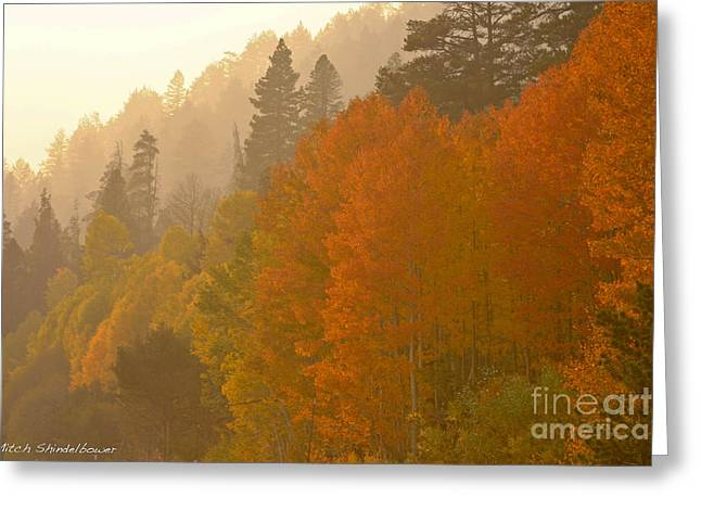 Greeting Card featuring the photograph Hope Valley by Mitch Shindelbower